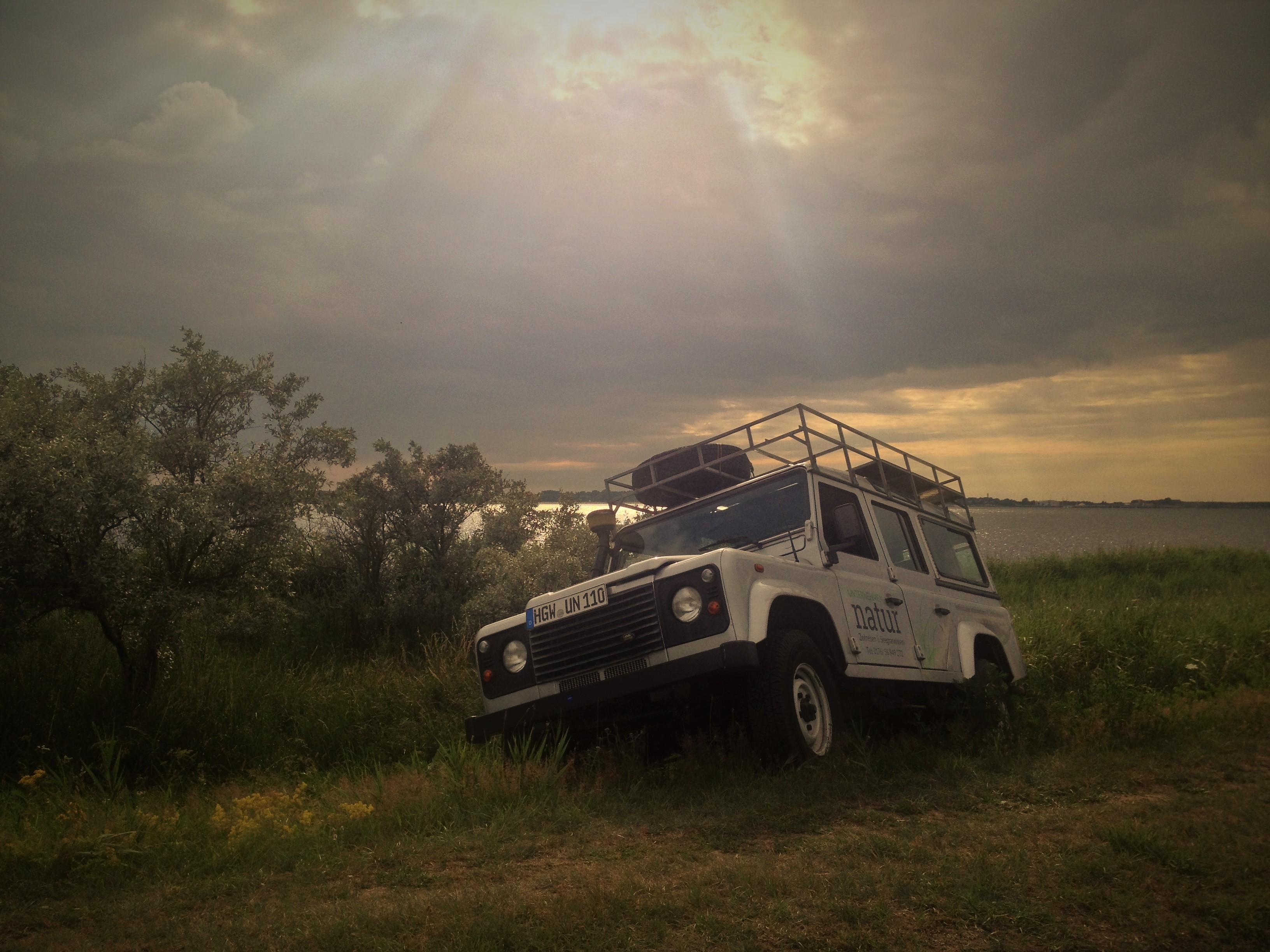 Ostsee Safari