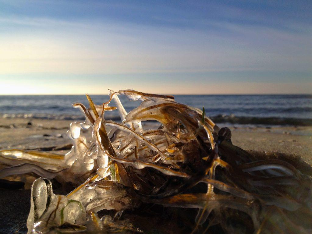 Eis an der Küste
